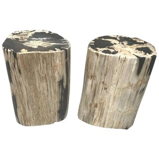 Pair of Polished Petrified Wood Side Tables For Sale