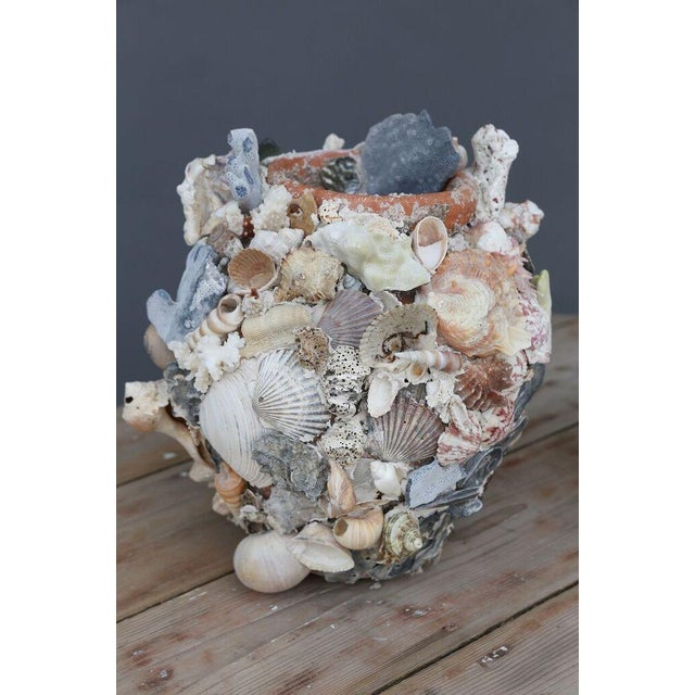 Shell-Covered Terracotta Cache-Pots For Sale - Image 4 of 9