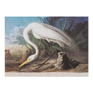 1960s Cottage Style Lithograph of a White Heron by John James Audubon For Sale