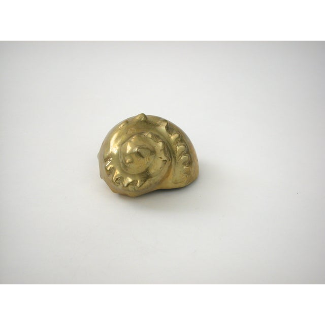 Brass Shell - Image 8 of 8