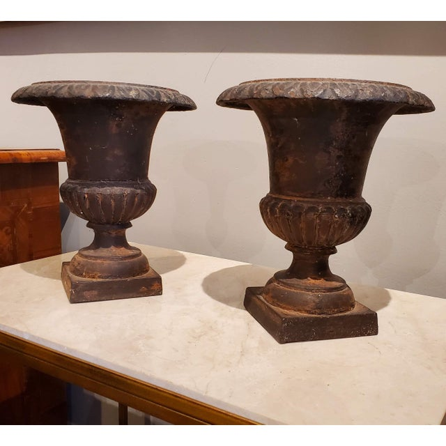 Small 19th Century French Provincial Neoclassical Cast Iron Urns - a Pair For Sale - Image 12 of 13