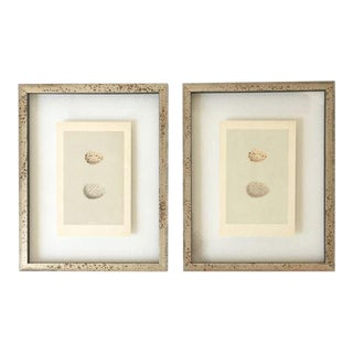 Antique Framed Morris Eggs Prints - a Pair For Sale