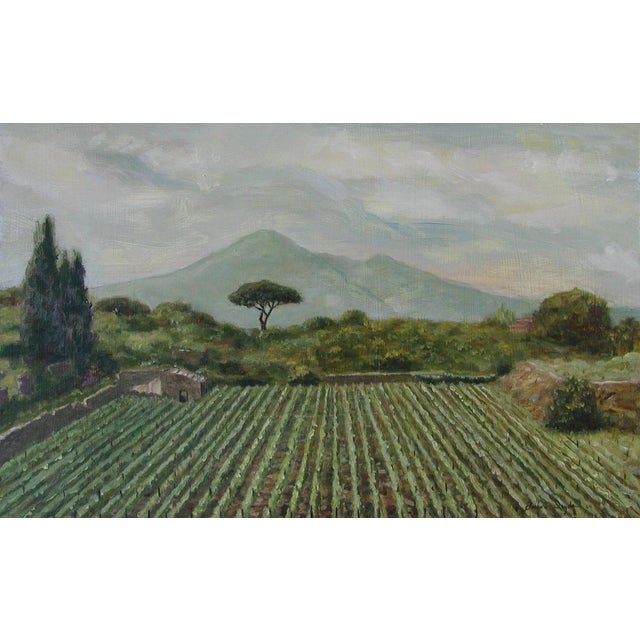 """Icyda Contemporary Framed Landscape """"View From Mount Vesuvius"""" For Sale"""