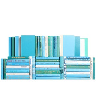 Modern Ocean Book Wall : Set of Fifty Decorative Books For Sale