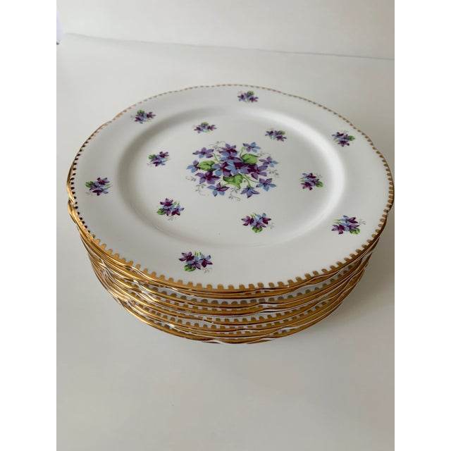 Lovely set of 10 bone china salad plates. A crisp white background accented with hand painted violet flowers and a...