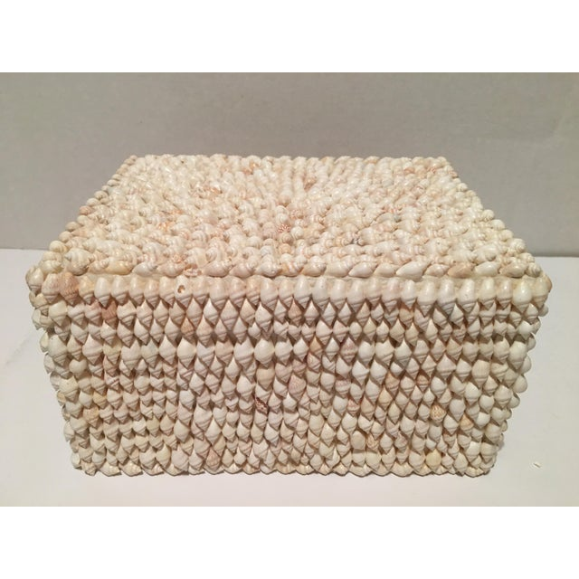 Vintage Sea Shell Trinket Box, Phillipines For Sale - Image 4 of 7