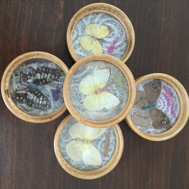 Vintage Butterfly Coasters - Set of 5 - Image 4 of 11