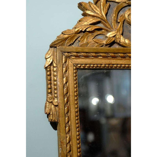 Late 19th Century French 19th Century Gilded Carved Mirror With Bird and Rose Motifs For Sale - Image 5 of 11