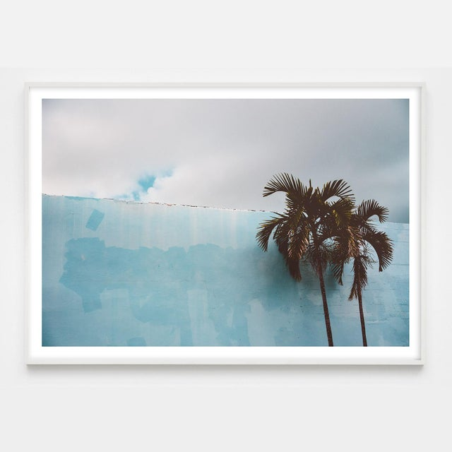 American Palm Trees Against Blue Miami Beach Photo Pigment Print For Sale - Image 3 of 4