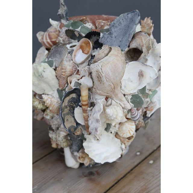 2000 - 2009 Shell-Covered Terracotta Cache-Pots For Sale - Image 5 of 9