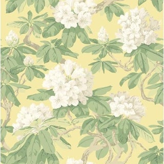 Cole & Son Bourlie Wallpaper Roll - Pale Lemon For Sale