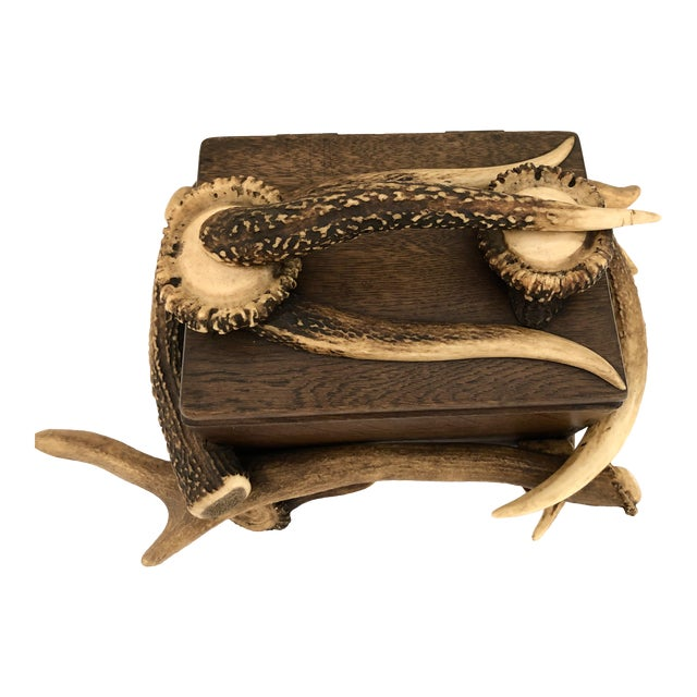 Black Forest Wood Box With Natural Antlers For Sale