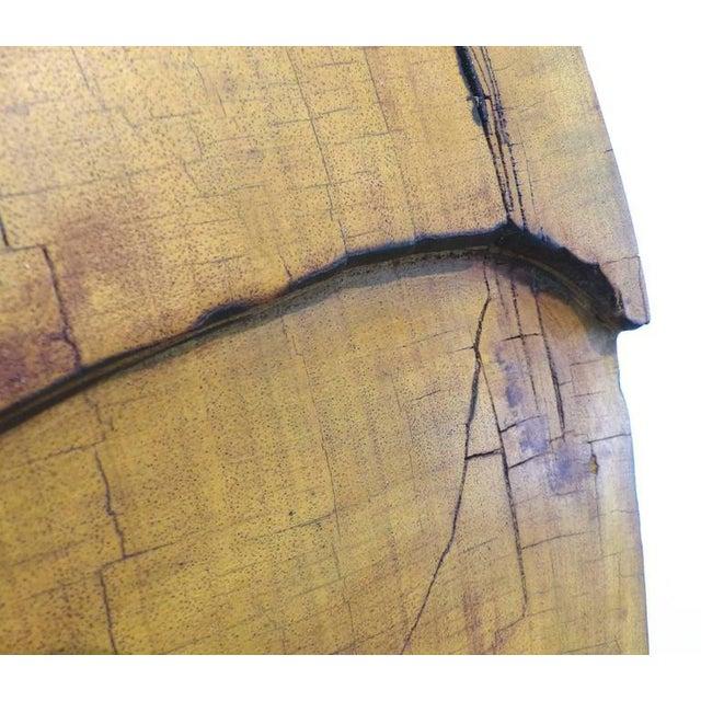Black Monumental Amazon Kapok Tree Reclaimed Wood Sculpture by Artist Valeria Totti For Sale - Image 8 of 11