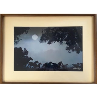 Robert Vavra,Thunder by Moonlight, 1978 For Sale
