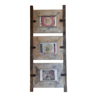Mid-Century Pressed Botanical Rustic Frame With Pressed Floral Art For Sale