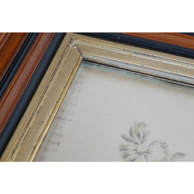 19th Century French Hand Colored Floral Etchings-A Pair For Sale - Image 10 of 12