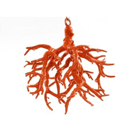 Ceiling Coral Sculpture by Maurizio Epifani For Sale - Image 6 of 6