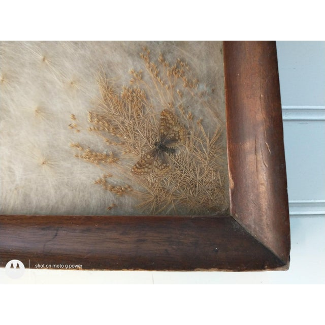Wood Antique Arts & Crafts Milkweed & Real Butterflies Serving Tray For Sale - Image 7 of 10