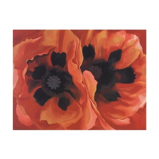 Georgia O'Keeffe- Oriental Poppy For Sale