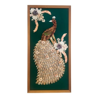 Peacock Shell Art For Sale