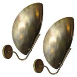 Image of Raw Brass Beetle Wall Lights For Sale