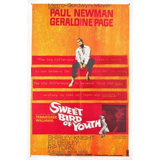 Sweet Bird of Youth 1962 U.S. One Sheet Film Poster For Sale