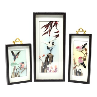 Vintage Feather Art Bird Sculptures in Shadow Boxes - Set of 3 For Sale