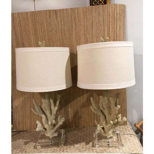 Faux Coral Custom Table Lamps on Lucite Bases - a Pair For Sale In West Palm - Image 6 of 6