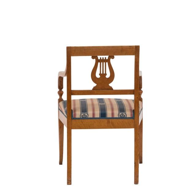 19th Century Swedish Biedermeier Birch Arm Chair For Sale - Image 5 of 6