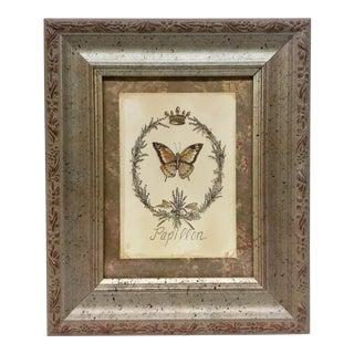 Papillon Butterfly Framed Print For Sale