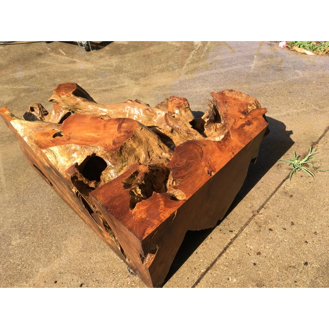 Ancient Cypress Root Burl Coffee Table or Bar For Sale - Image 4 of 7