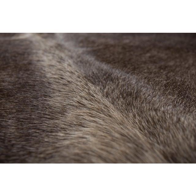 """Authentic Rare Aydin Cowhide Rug, Gray, Handmade in Europe - 6'0""""x7'0"""" For Sale - Image 10 of 11"""