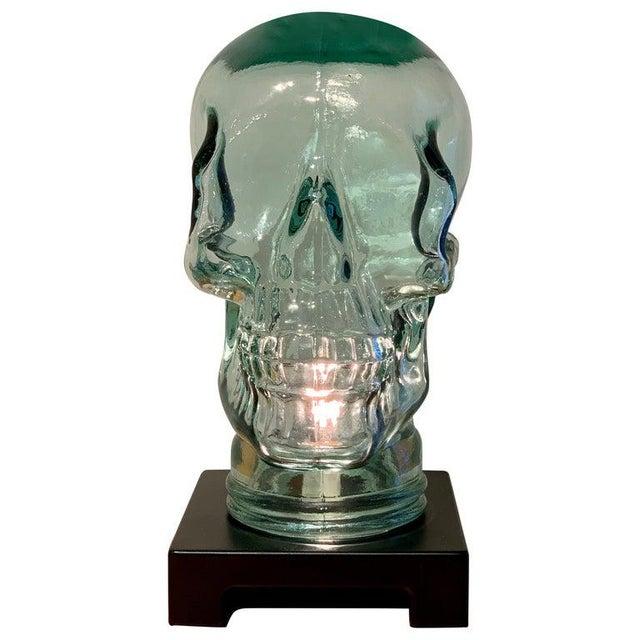 Modern Glass Skull Lamp For Sale - Image 12 of 12