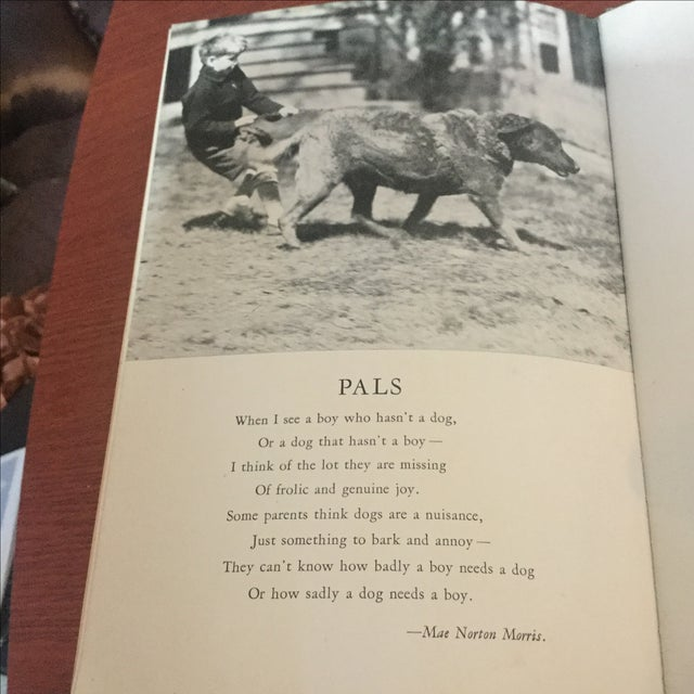 1937 Book, Your Dog His Care & Training For Sale - Image 9 of 9