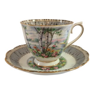 """Royal Albert """"Silver Birch"""" Bone China Tea Cup and Saucer Made in England For Sale"""