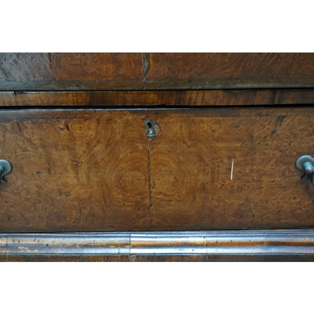 Small Antique English Burlwood Veneer Chest For Sale - Image 4 of 10