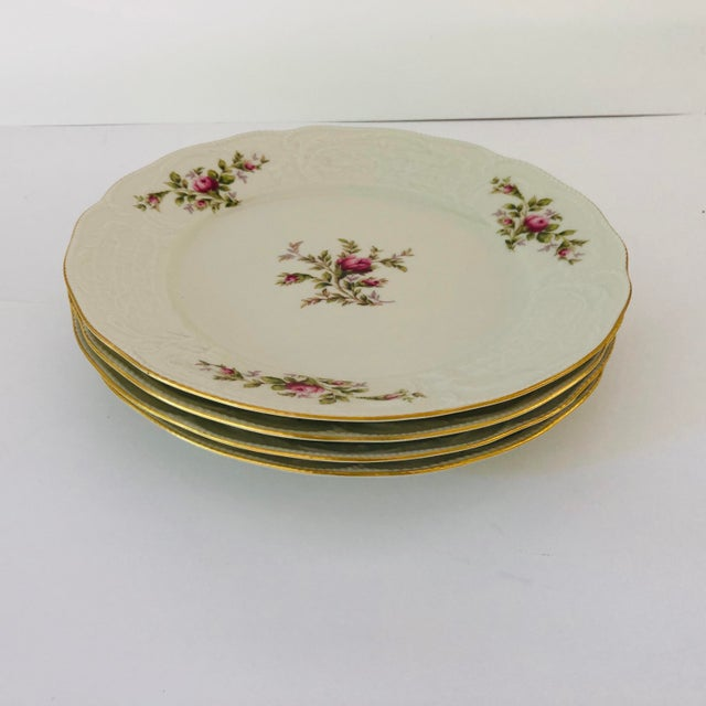 1990s Vintage Rosenthal Classic Rose Collection Sans Souci Ivory Dinner Plates S/4 For Sale - Image 5 of 5