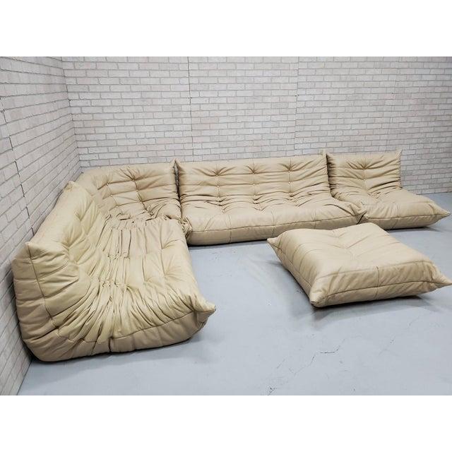 Mid Century Medern Togo Sofa Set by Michel Ducaroy for Ligne Roset - 5 Piece Set For Sale - Image 11 of 11