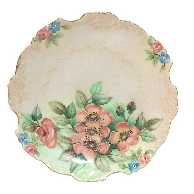 Selesia Germany Hand Painted Porcelain Floral Cabinet Plate For Sale