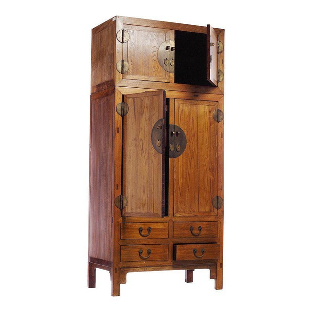 Asian 19th Century Large Natural Elmwood Compound Cabinet with Medallions from China For Sale - Image 3 of 6