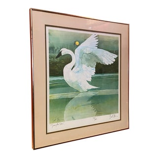 'Trumpeter Swan' Signed & Numbered Lithograph by Bart Forbes For Sale