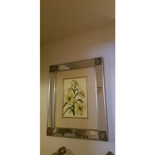 Mirror With Framed Botanical Print For Sale - Image 11 of 11