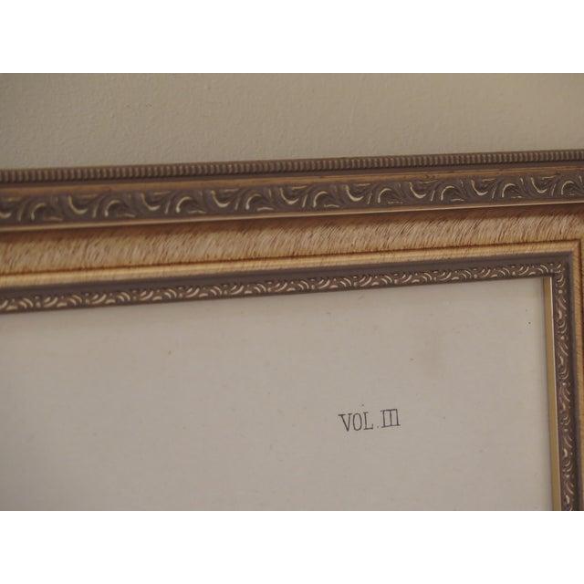 1990s Vintage Custom Framed Channel Bill Bird Print For Sale - Image 4 of 7