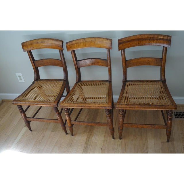 Traditional Antique Cane Seat Dining Chairs - Set of 3 For Sale - Image 3 of - Antique Cane Seat Dining Chairs - Set Of 3 Chairish