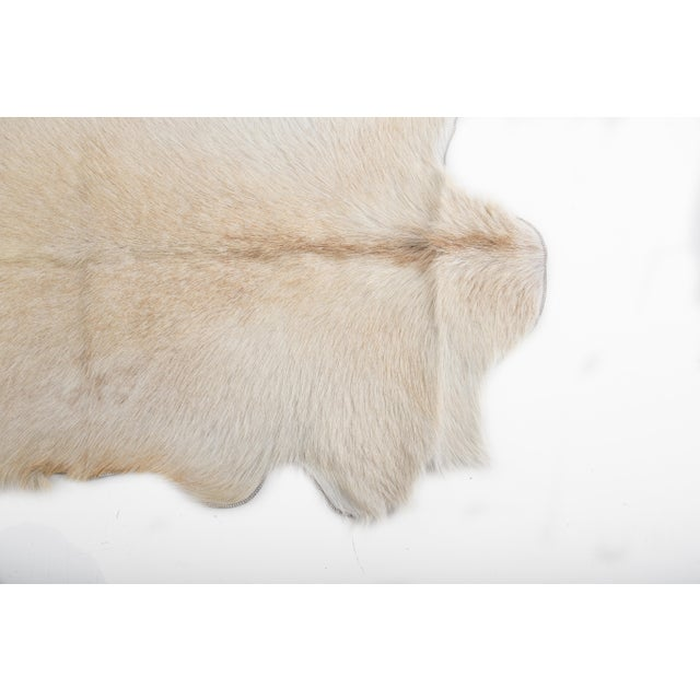 "Aydin Goatskin Patchwork Accent Area Rug - 4'7"" x 7'3"" - Image 6 of 8"