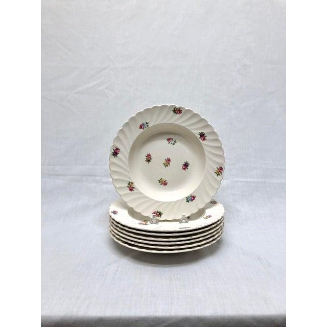 Ceramic Royal Staffordshire Soup Bowls - Set of 7 For Sale - Image 7 of 7