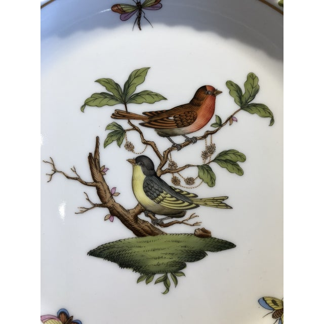 English English Traditional Herend Hand Painted Porcelain Rothchild Bird Decorative Plate For Sale - Image 3 of 12