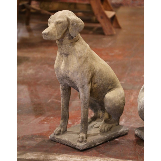 Large French Carved Stone Verdigris Patinated Labrador Dog Sculptures - a Pair For Sale - Image 4 of 9
