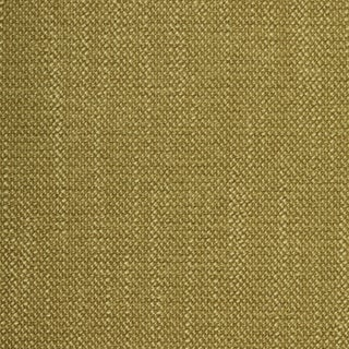Sample Fame Fern Fabric For Sale