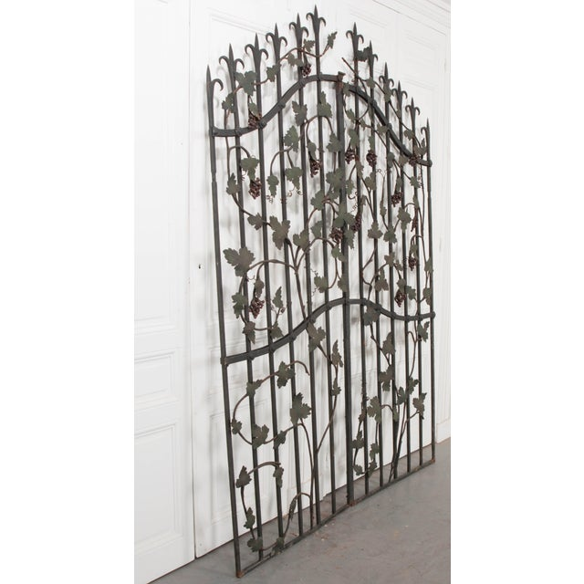 "Black Pair of French Early 20th Century Painted Wrought-Iron ""Grapevine"" Gates For Sale - Image 8 of 13"
